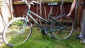 RALEIGH Pioneer bike 6 speeds (East London)