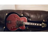 Peerless Wizard Custom Guitar Thin line Arch-top semi acoustic, Deluxe Case