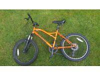 MuddyFox Child Mountain Bike