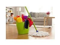 DOMESTIC AND COMMERCIAL CLEANING SERVICES FROM £24