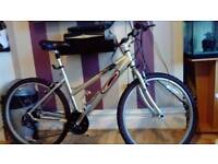 Ladies carrera vulcan hybrid 7005 mountain bike