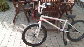 BMX Mongoose Program 20- Silver