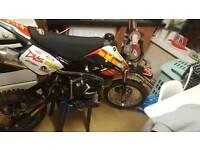 Xsport 110cc mint