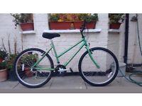 Raleigh Zest 15 speed bike