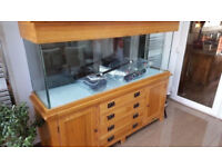Aqua oak 180 marine tropical cold water fish tank Solid oak aquarium 6 ft