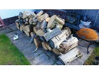 FREE firewood wood logs