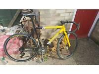 Road bike teman speed 1000