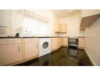 3 BED FLAT AVAILABLE IN THE NEW YEAR!! FURNISHED/UNFURNISHED!! NEWLY REFURBISHED!! STOKE NEWINGTON!!