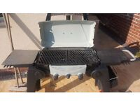 BBQ Thermos Grill 2 Go