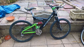 barracuda mountain bike