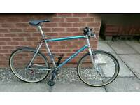 1995 Raleigh Mtrax 19inch converted to single speed