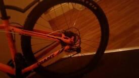 Orange GIANT mountain bike £150