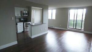 Beautiful and Luxurious Suites Available for Rent - Free month Kitchener / Waterloo Kitchener Area image 2