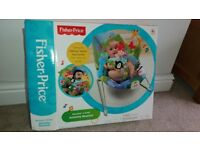 Fisher Price Baby Activity Bouncer