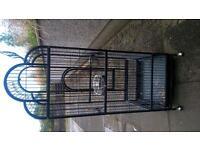 black bird cage,,needs tidied u,,£80 ono