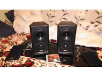 TANNOY Special Edition
