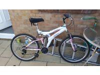 Ladies Mountain Bike for sale.