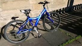 Giant MTX 225 childs mountain bike