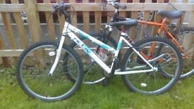 2x bikes for sale