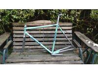 Bianchi Frame Race Bike TO FIX (no fork)