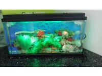 Artifical jelly fish tank -changes colour and artificial jelly fish move around