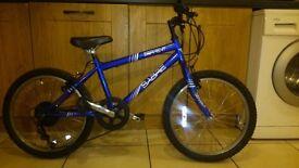 Boys 20'' Bike