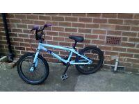 BMX bike - sturdy strong bike :)