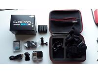 GoPro Hero 4 Silver With Case