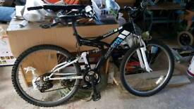 Boys Raleigh mission mountain bike
