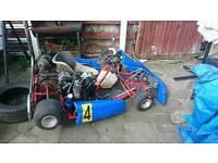 F1 650cc v twin thunder kart:adults go kart