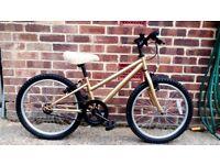 Girls bike single speed no gears 18 inch wheels