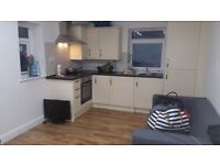 BEAUTIFUL 1 BEDROOM FLAT TO RENT ON CLIFTON STREET