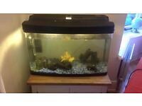 Aquarium fish tank 120 litre