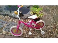 Biycycle