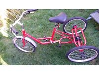 Mission tricycle trike mens ladies shopper cargo disability bike Durham