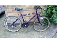 Girls Raleigh Ascender 15 gear bike for sale