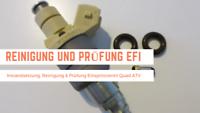 Quad ATV Einspritzventile Prüfung und Reinigung EFI Brandenburg - Ahrensfelde Vorschau
