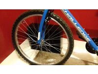 Brand new bike for sale (never been used)