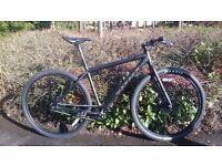 Mountain / commuting bike, 29er singlespeed disc brake