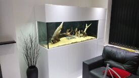 CUSTOM BUILT FISH TANKS - MARINE - TROPICAL - COLD WATER MADE TO ORDER IN KENT