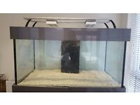 Marine Aquarium 4ftx2ftx2ft