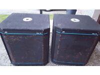 PEAVEY HI-SYS 115 BASS BINS
