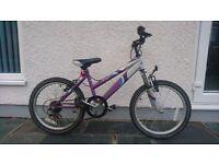 Appollo Pure bike