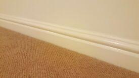carpets, skirting boards and laminate
