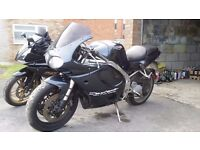 Triumph Daytona T595 955 1997 project