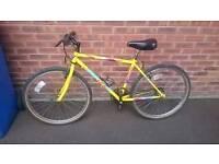 Saracen Sahara Mountain Bike - Rare