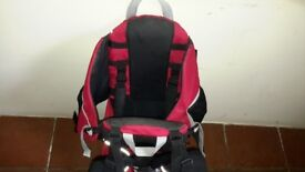 Child Carrier - Phil and Teds Metro. Very sturdy, excellent for hiking.