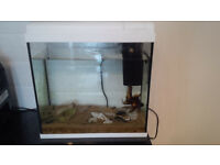 Fish tank + pump Perfect condition