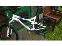 Specialized 2011 freeride bike - MAY SPLIT FOR RIGHT PRICE-