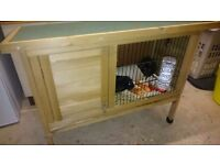 Guinea pigs, hutch, run, food, bedding, two bottles, two bowls and transport case.